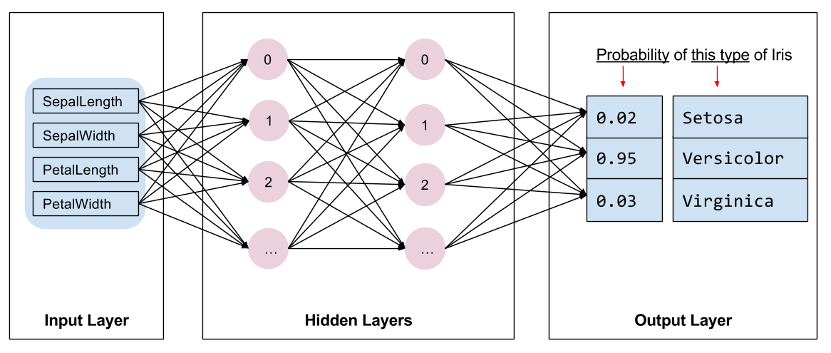 网络结构示意图: 输入层, 2 隐含层, 输出层